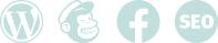 WordPress MailChimp Facebook SEO